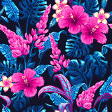Tropical seamless pattern with palm leaves. royalty free illustration