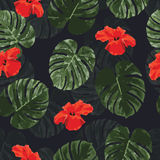 Tropical seamless pattern with palm monstera leaves and flowers Royalty Free Stock Image