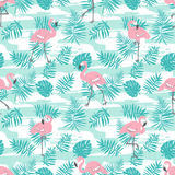 Tropical seamless pattern with pink flamingos and green palm leaves. Vector design. Stock Images