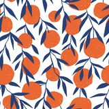 Tropical seamless pattern with red oranges. Fruit background. Vector bright print for fabric or wallpaper. Tropical seamless pattern with red oranges. Fruit stock illustration