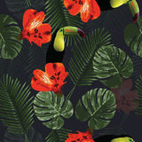 Tropical seamless pattern with toucan parrot, flowers and palm  Stock Photos