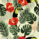 Tropical seamless pattern with toucan parrot, flowers and palm  Stock Images