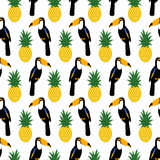 Tropical seamless pattern with toucans and pineapples. Royalty Free Stock Images