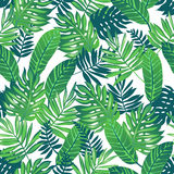 Tropical seamless pattern. vector illustration