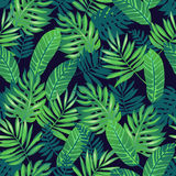 Tropical seamless pattern. Royalty Free Stock Image