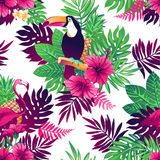 Tropical seamless pattern. Stock Photography