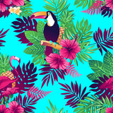Tropical seamless pattern. Royalty Free Stock Images