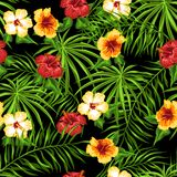 Tropical seamless pattern. Palm leaves and hibiscus flowers royalty free illustration
