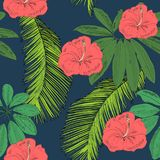 Tropical seamless pattern. Tropical seamless vector pattern with leaves and flowers Royalty Free Stock Image