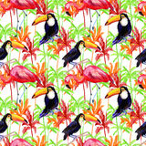 Tropical Seamless pattern. Watercolor painting. Royalty Free Stock Photo