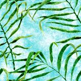 Tropical seamless pattern. Watercolor swaying palm vector illustration