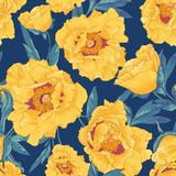 Tropical seamless pattern with yellow flowers. Beautiful tropical seamless vintage pattern with yellow flowers on a dark blue background Stock Photography