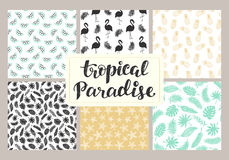 Tropical seamless patterns collection. Set of hawaiian plants, palm leaves, flamingo, pineapples, sea stars hand drawn doodles. Good for wallpaper, invitation Stock Images