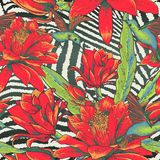Tropical Seamless vintage floral pattern Stock Photography
