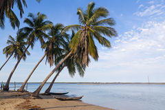 Tropical seascape Royalty Free Stock Photography