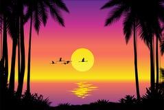 Tropical seascape. Beautiful tropical coastline – vector illustration royalty free illustration