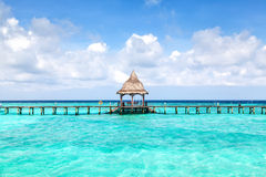 Tropical seascape. With turquoise lagoon Royalty Free Stock Image