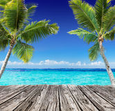 Tropical Seascape With Wooden Plank And Palm Trees On The Turquoise Ocean Stock Photos