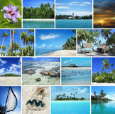 Tropical seascapes Royalty Free Stock Image