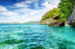 Tropical seashore.  Stock Images