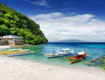 Tropical seashore. Philippines. Stock Images