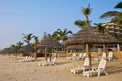 Tropical seaside Stock Photos