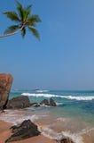Tropical seaside Royalty Free Stock Image