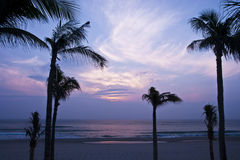 Tropical seaside Royalty Free Stock Images