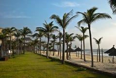 Tropical seaside Stock Image