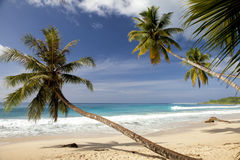 Tropical secluded dream beach with palmtrees. And White sand Royalty Free Stock Photo