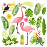 Tropical set. Palm leaves, tropical plants, flowers, pineapple, flamingo, toucan. Royalty Free Stock Photo