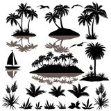 Tropical set with palms silhouettes. Tropical set, sea island with palm trees plants, flowers, birds gulls and ship black silhouettes isolated on white Stock Photos