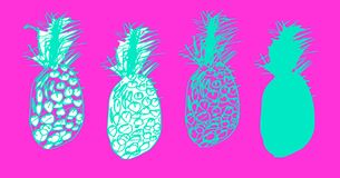 Tropical set of sketches of pineapples, ananas in doodle style. Set of sketches of pineapples, ananas in doodle style. Hand drawh manual graphics. Silhouettes vector illustration