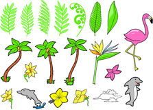 Tropical Set Vector  Royalty Free Stock Photography