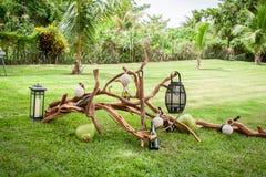 Tropical setting at a garden Stock Photos