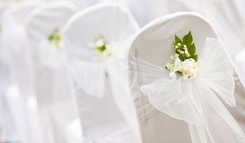 Free Tropical Settings For A Wedding Royalty Free Stock Image - 20756866