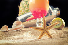 Tropical sex on the beach cocktail with shaker Royalty Free Stock Images