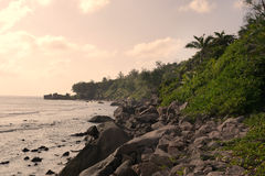 Tropical Seychelles. Palm trees and Indian Ocean of Praslin Island at sunset. Stock Photos