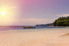Tropical Seychelles. Palm trees on the La Digue Royalty Free Stock Photos