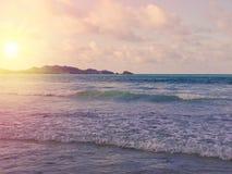 Tropical Seychelles. Palm trees on the Mahe Stock Photo