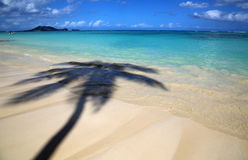 Tropical shadow on Lanikai Beach Stock Photos