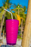 Tropical shake, refreshment drink in glass on tropical Stock Photography