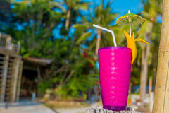 Tropical shake, refreshment drink in glass on tropical. Tropical shake, refreshment drink in decorated galss on tropical background royalty free stock photography