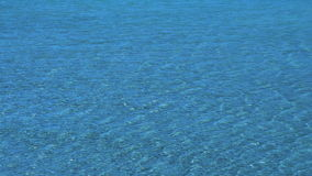 Tropical Shallow Water. Warm tropical waters of the lagoon. Bright blue sea water stock footage