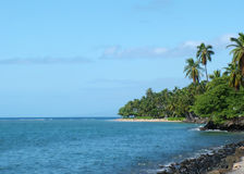 Tropical Shore. View of a tropical shore/beach Stock Photography