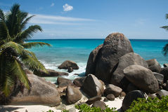 Tropical shore Royalty Free Stock Images