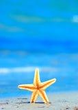 Tropical shore Stock Photo