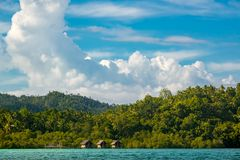 Tropical Shore with a Rainforest and Three Huts on Stilts. Indonesia. Coast of the tropical island, overgrown with rainforest. Sunny Weather. Three huts on Stock Image
