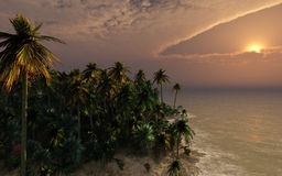 Tropical Shore Sunset royalty free stock image
