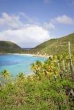 Tropical shoreline. Beautiful lush green shoreline of the British Virgin Islands Stock Photos